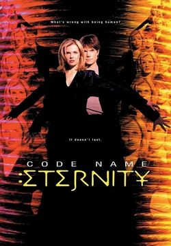 Пароль: Вечность — Code Name: Eternity (1999-2000)